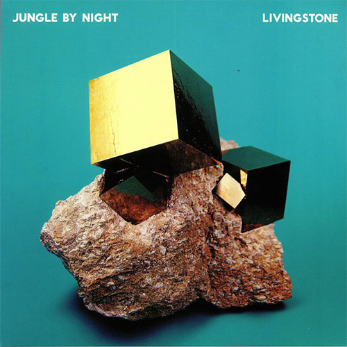 JUNGLE BY NIGHT – LIVINGSTONE